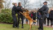 Girls`Day in Flensburg bei der Bundespolizei - Foto: Benjamin Nolte / www.bos-inside.de