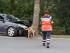 PKW prallt gegen Baum - Rettungshunde suchen nach Fahrer